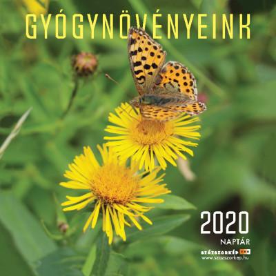 - Gyógynövényeink naptár 22x22 cm - 2020