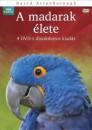 David Attenborough - BBC - A madarak élete díszdoboz - 4 DVD