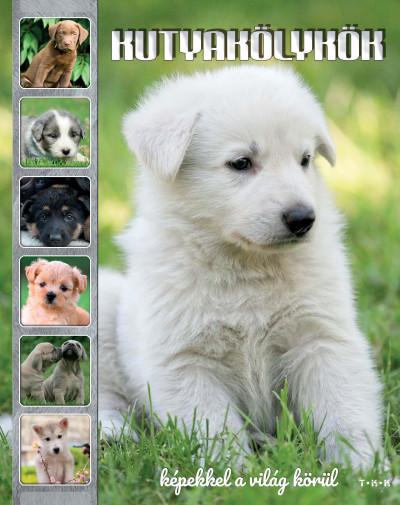 - Kutyakölykök