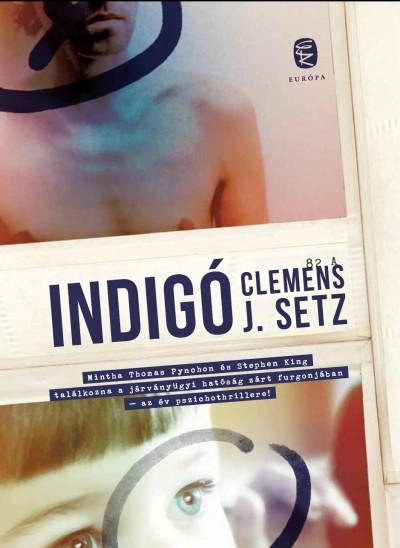 Clemens J. Setz - Indigó