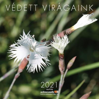 - Védett Virágaink naptár 20x20 cm - 2021