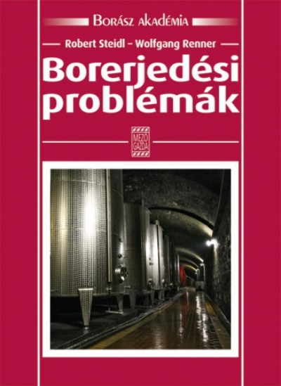 Wolfgang Renner - Robert Steidl - Borerjedési problémák