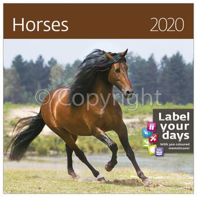 - Dayliner falinaptár - Horses LP 2020