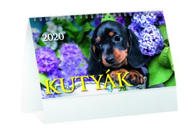 - Kutyák asztali naptár - 2020