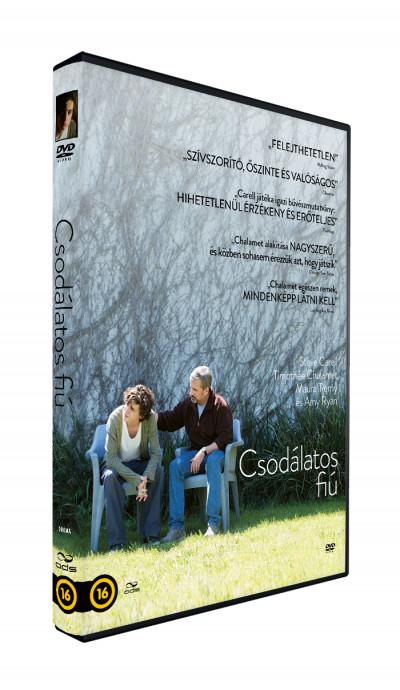 Felix Van Groeningen - Csodálatos fiú - DVD