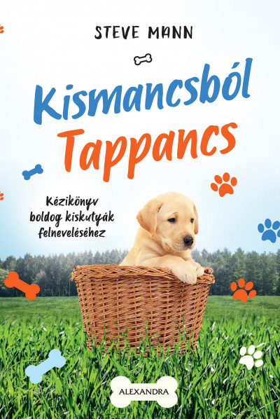 Steve Mann - Kismancsból Tappancs