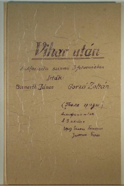 Bienerth János - Gorzó Zoltán - Vihar után