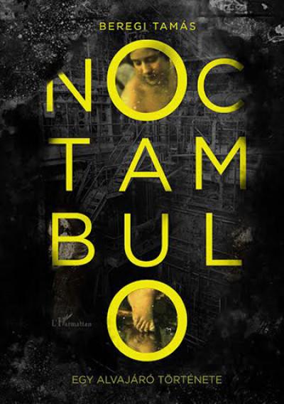 Beregi Tamás - Noctambulo