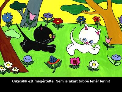 - Cikicakk, a fekete cica - diafilm
