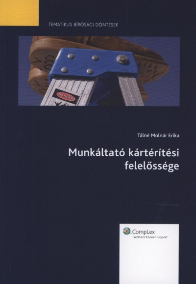 Tálné Molnár Erika - Munkáltató kártérítési felelőssége