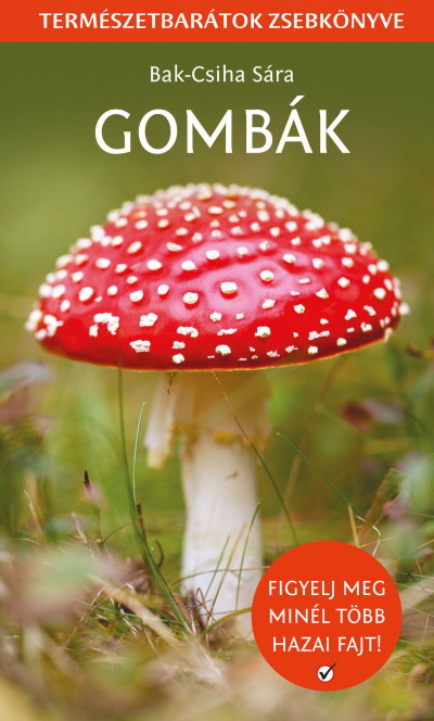 Bak-Csiha Sára - Gombák