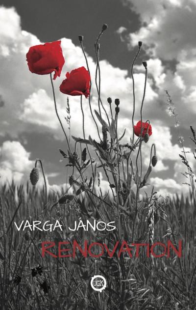 Varga János - Renovation
