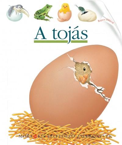 Pascale De Bourgoing  (Összeáll.) - A tojás - Kis felfedező zsebkönyvek 34.