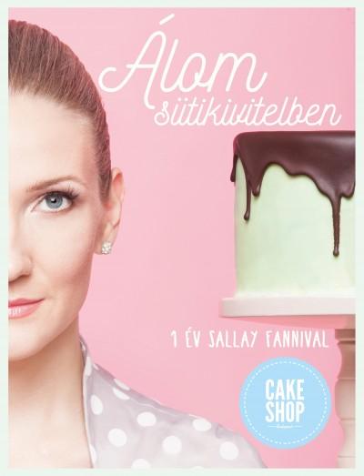 Sallay Fanni - Álom sütikivitelben