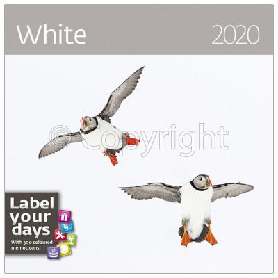 - Dayliner falinaptár - White LP 2020