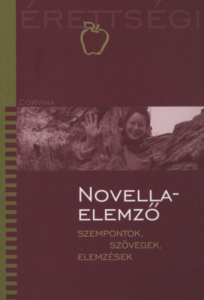 Vass Judit - Novellaelemző