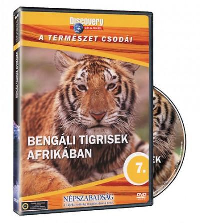 - A természet csodái 07. -  Bengáli tigrisek afrikában - DVD