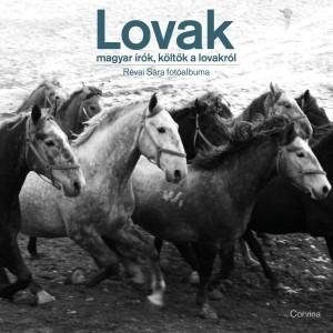 - Lovak - Magyar �r�k, k�lt�k a lovakr�l