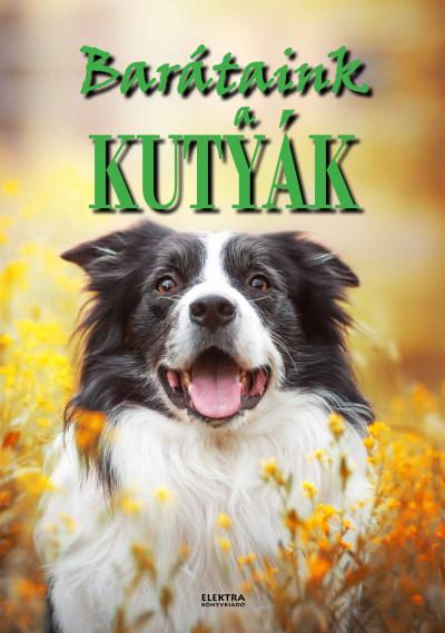 Bernáth István - Barátaink a kutyák