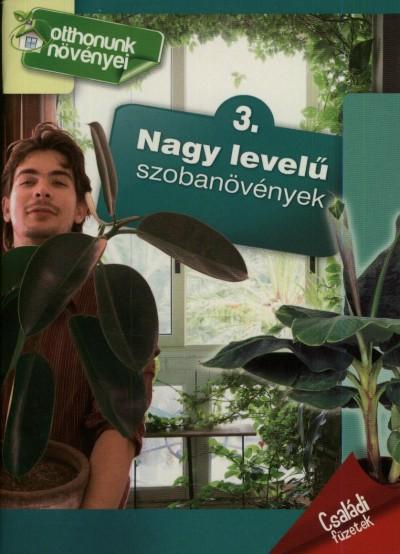- Nagy levelű szobanövények
